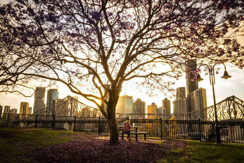 Assento humano no banco no parque na cidade imagem de stock royalty free