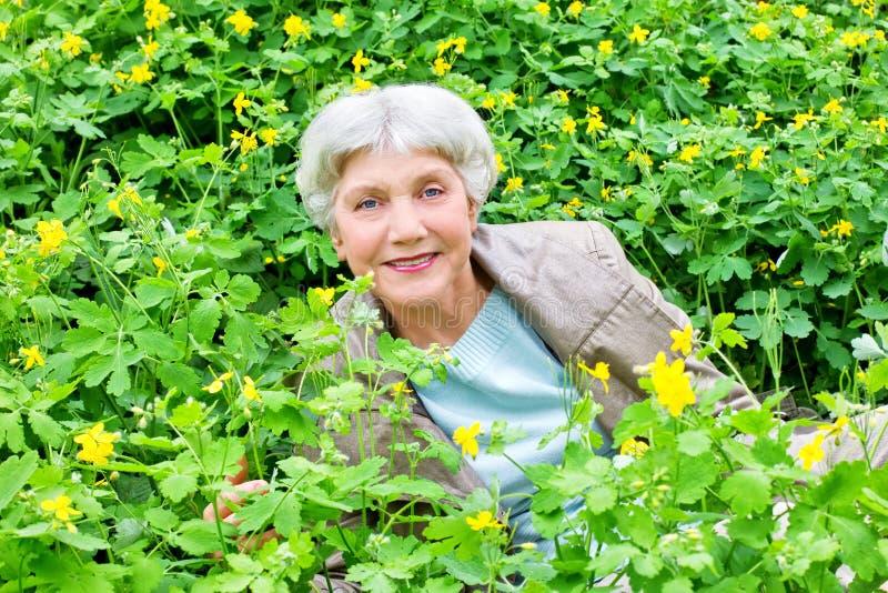 Assento idoso bonito feliz da mulher de flores amarelas fotografia de stock