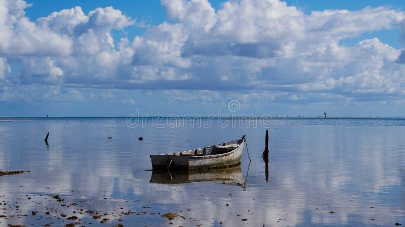 Assento nas águas imóveis da baía de Kaneohe imagens de stock royalty free