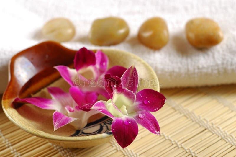 Assessories di Aromatherapy fotografie stock libere da diritti