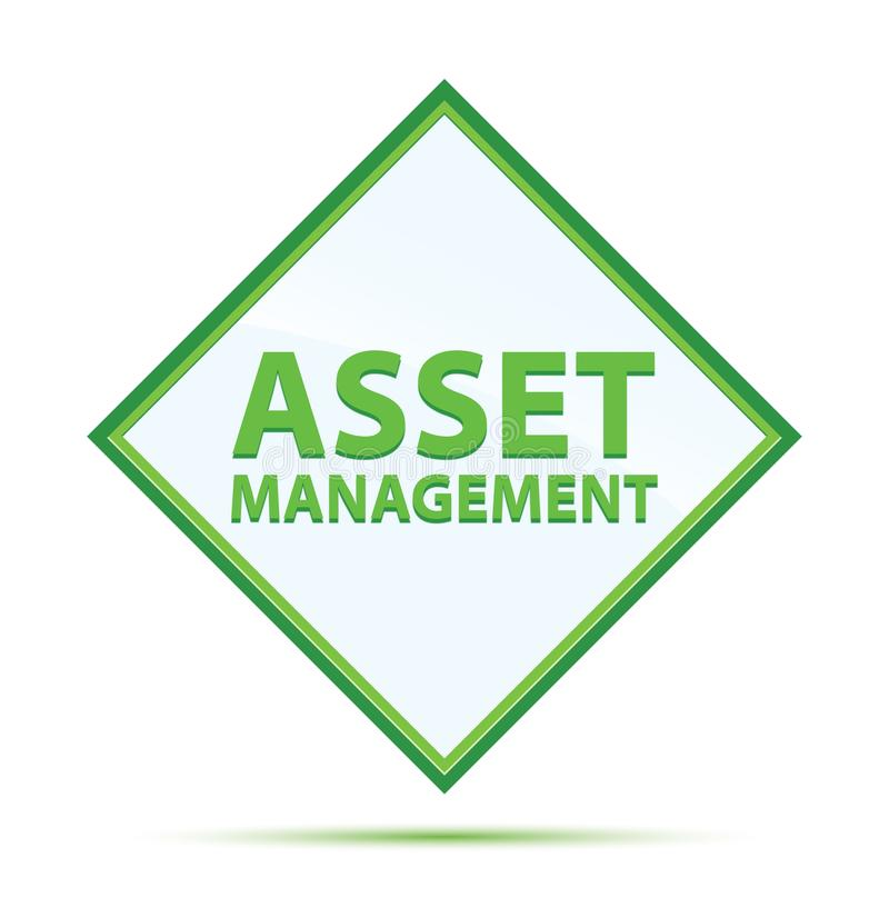 Asset Management modern abstrakt grön diamantknapp royaltyfri illustrationer
