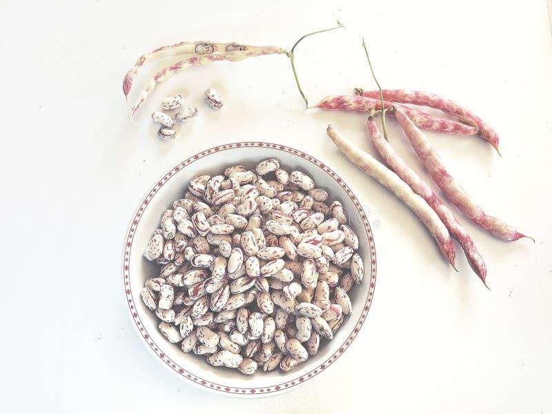 assiette de haricots frais comme ingrédient d'une recette végétarienne saine photos libres de droits