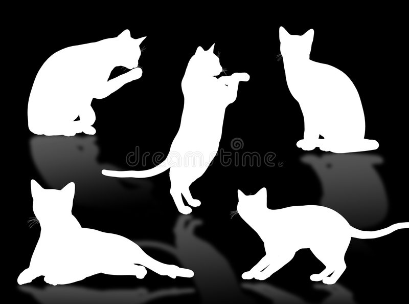 Assiettes de chat illustration de vecteur