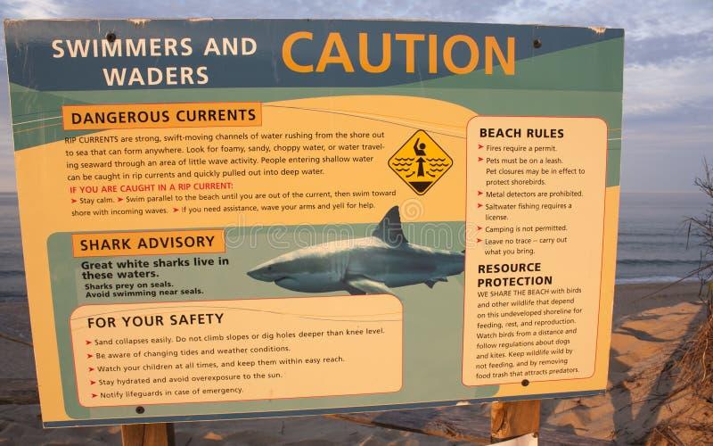 Assine nadadores dos cuidados sobre tubarões na praia oca de Newcomb em Wellfleet, Massachusetts fotografia de stock