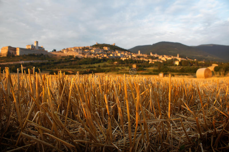 Assisi Behind Straws. Close-up view of hay straws with the village of Assisi in the background royalty free stock images