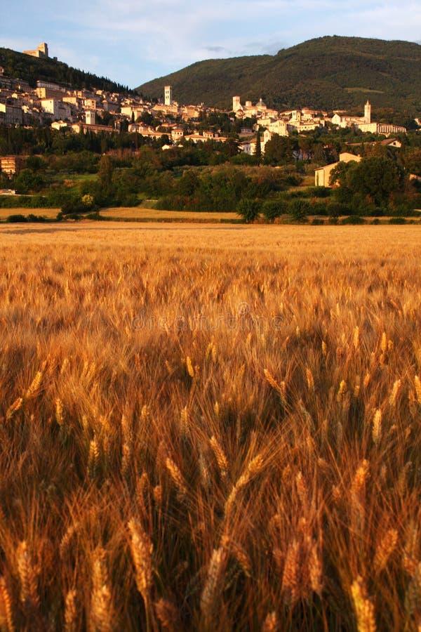 Assisi sunset royalty free stock image