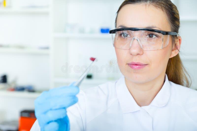 Assistant de laboratoire de femme dans le laboratoire de la qualité des produits alimentaires image libre de droits