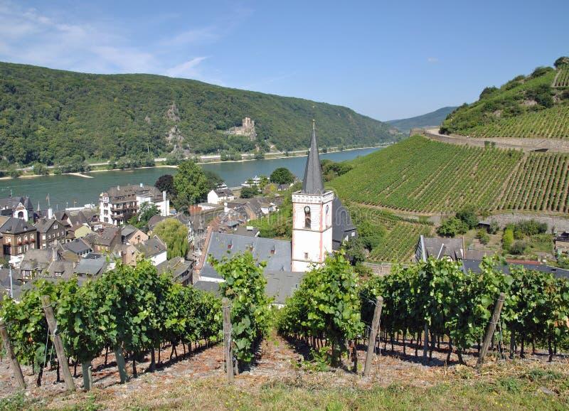 Download Assmannshausen Rhine Flod, Tyskland Fotografering för Bildbyråer - Bild av turism, rhineland: 27280739