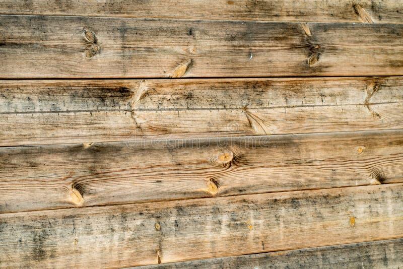 Assoalho de madeira claro imagem de stock