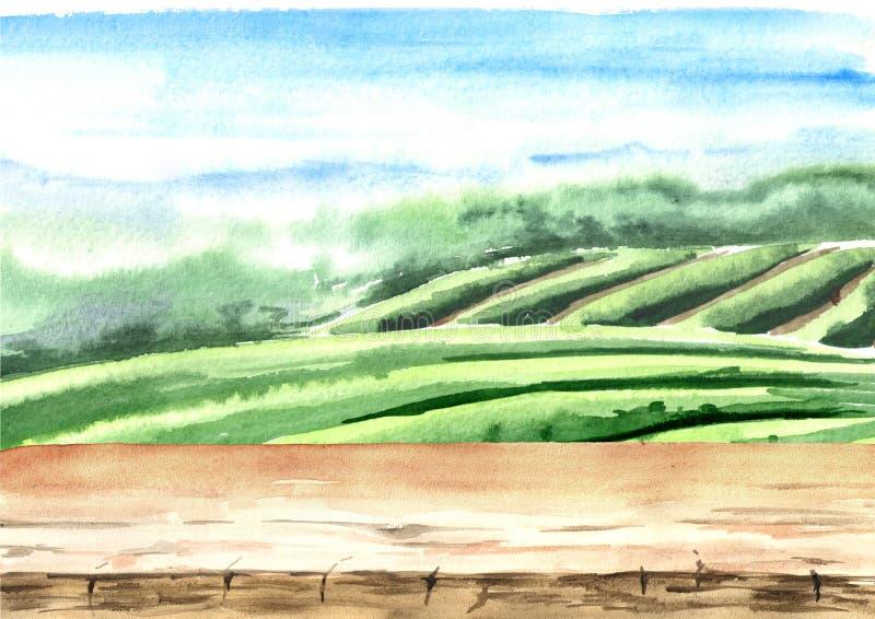 Assoalho de madeira na plantação de chá Ilustração tirada mão da aguarela Fundo do chá ilustração stock