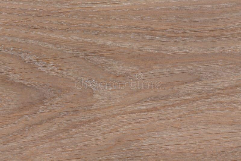 Assoalho de parquet da madeira de carvalho, textura, fundo imagem de stock royalty free