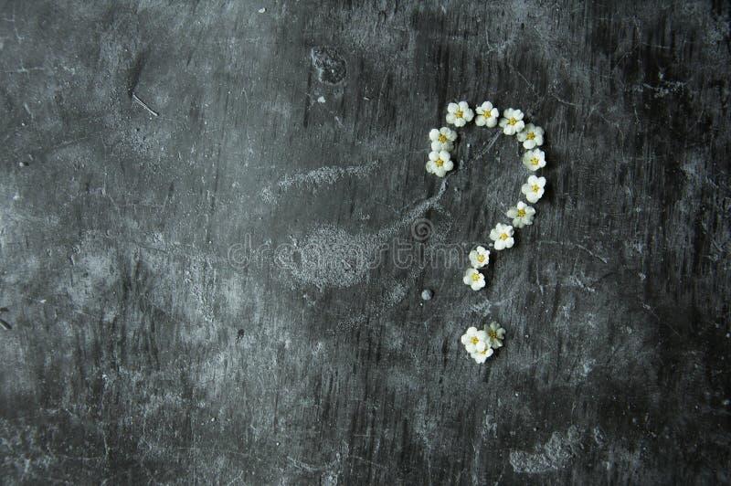 Assoalho de pedra do cimento sombrio de mármore cinzento do fundo Flores apresentadas 'da pergunta 'do símbolo do sinal A figura  imagem de stock royalty free