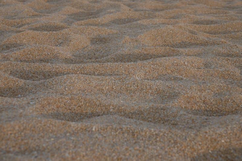 Assoalho de Sandy fotografia de stock royalty free