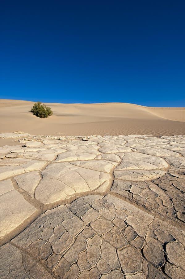 Assoalho do deserto de Death Valley foto de stock