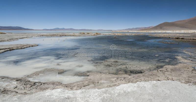 Associação da mola quente de Laguna y Termas de Polques com Salar de Chalviri no fundo, Salar de Uyuni, Potosi, Bolívia imagem de stock royalty free