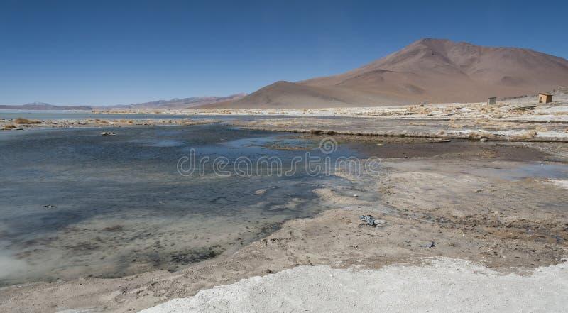 Associação da mola quente de Laguna y Termas de Polques com Salar de Chalviri no fundo, Salar de Uyuni, Potosi, Bolívia fotografia de stock royalty free