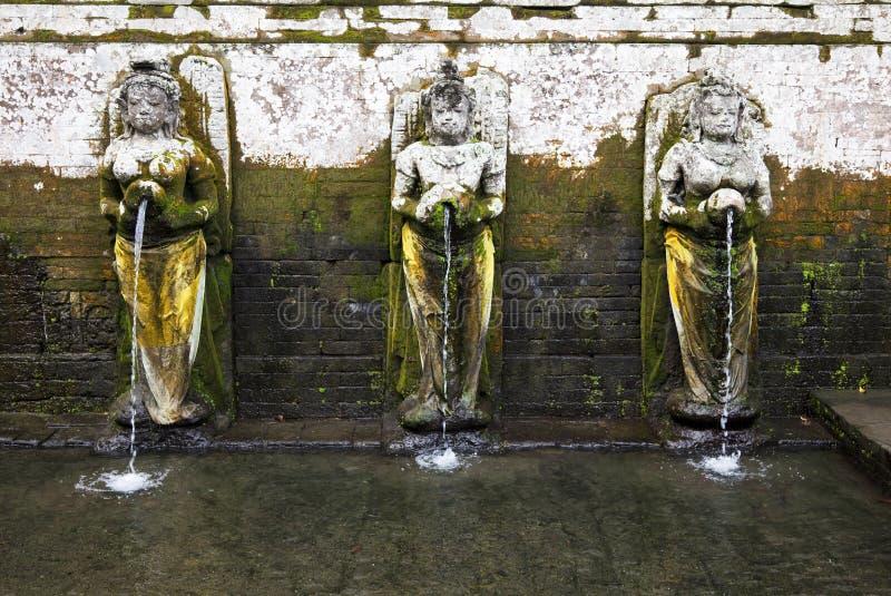 Associação de banho antiga, Gua Gajah, Bali, Indonésia imagem de stock