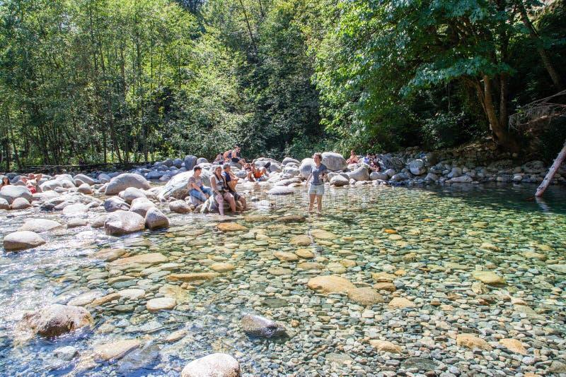 Associação de 30 pés em Lynn Canyon Park, Canadá imagem de stock royalty free