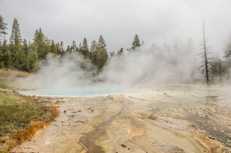 Associação de turquesa em Yellowstone imagem de stock