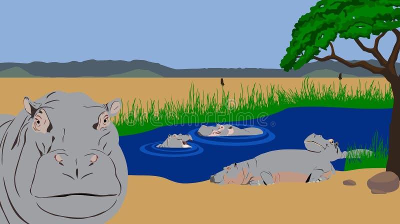 Associação do hipopótamo ilustração royalty free