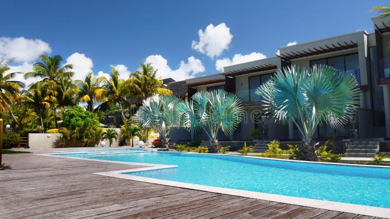 Associação exterior das palmeiras tropicais, feriados Maurícias fotografia de stock royalty free