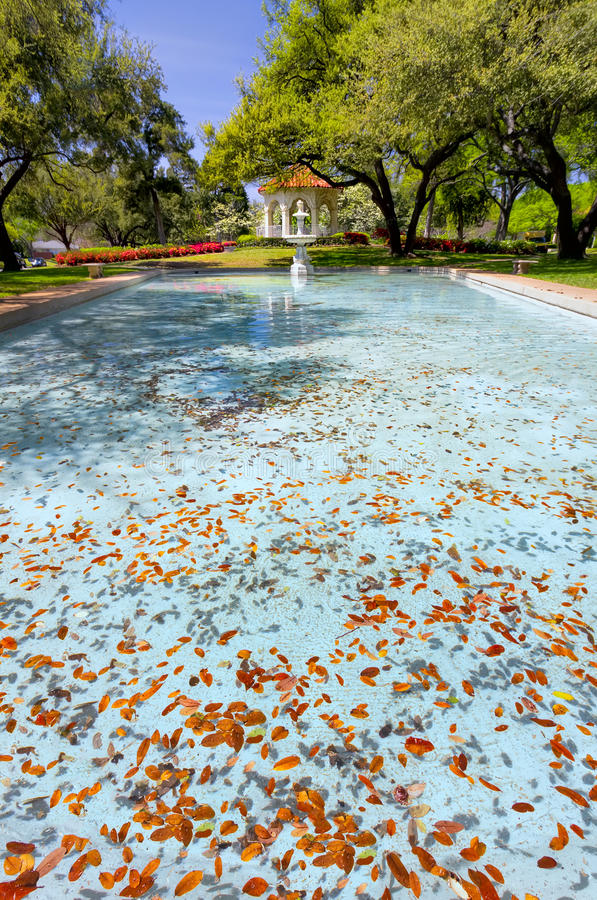 Parque de Flippen em Dallas, TX imagem de stock royalty free