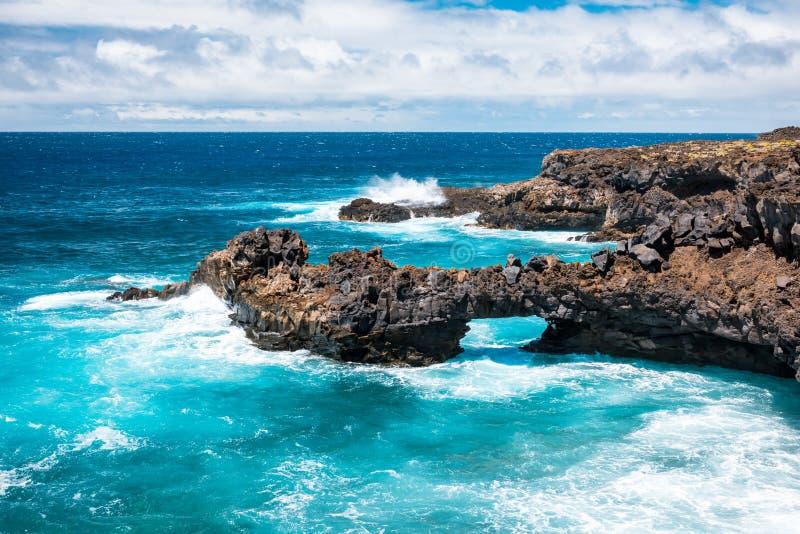 Associação natural maravilhosa na ilha de Tenerife imagem de stock royalty free