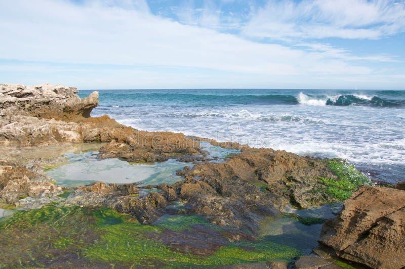 Associações da maré na ilha do pinguim fotografia de stock royalty free