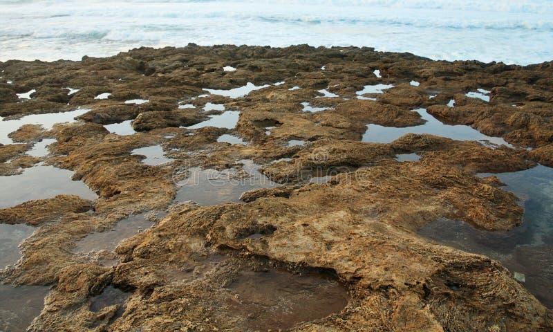 Associações rochosas da maré foto de stock