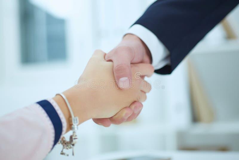 Assoieert gemaakte die overeenkomst, met handclasp wordt verzegeld Formeel groetgebaar royalty-vrije stock foto