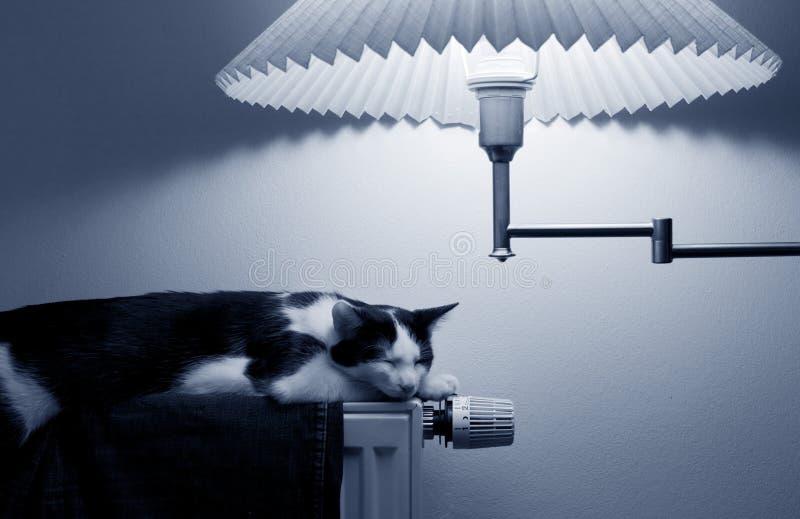 Assorbimento di corrente di energia immagine stock