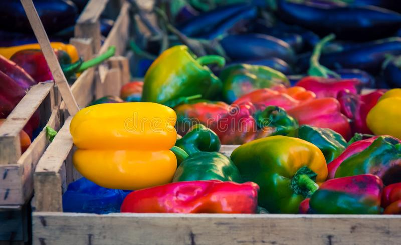 Assorted colourful peppers at a market stock photos