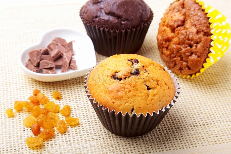 Assorted with Delicious homemade cupcakes with raisins and chocolate chips  on textile background. Muffins. Top royalty free stock photos