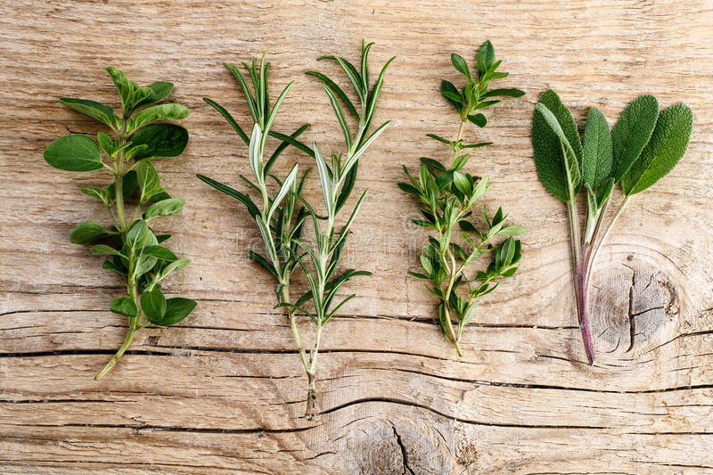 Download Assorted fresh Herbs stock image. Image of fresh, cotton - 31306895