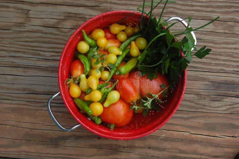 Fresh Produce royalty free stock photo