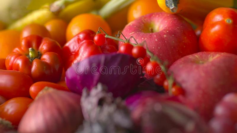 Assorted fresh ripe fruits and vegetables. Food concept background royalty free stock images