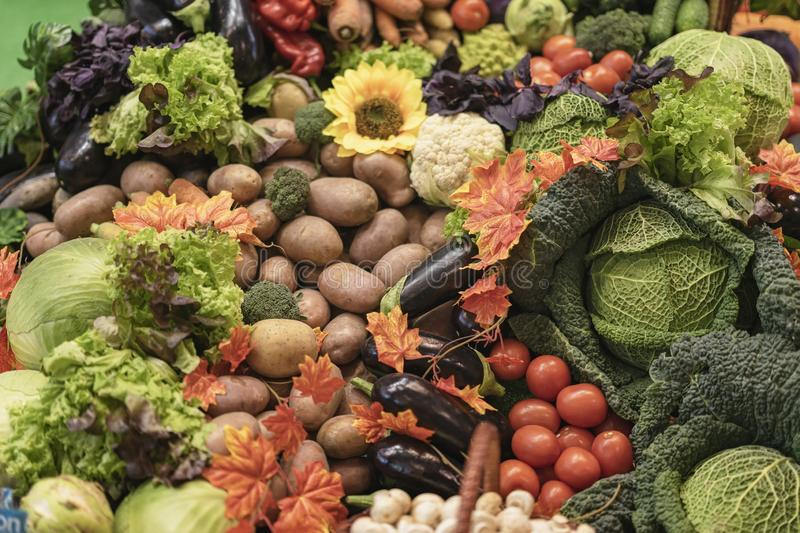 Assorted fresh ripe organic vegetables on farmers market. Top view. Live vitamins, rich harvest royalty free stock image