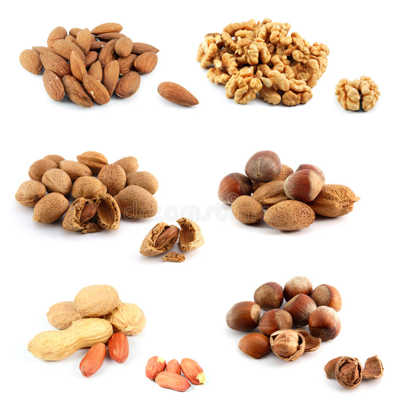 Download Assorted nuts stock image. Image of husk, cooking, health - 16343387