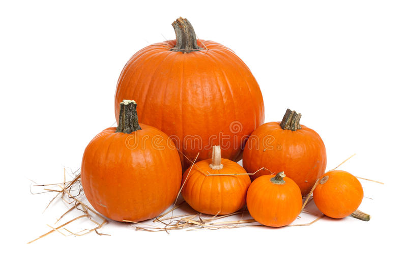 Download Assorted Pumpkins With Straw On White Stock Image - Image: 11778479