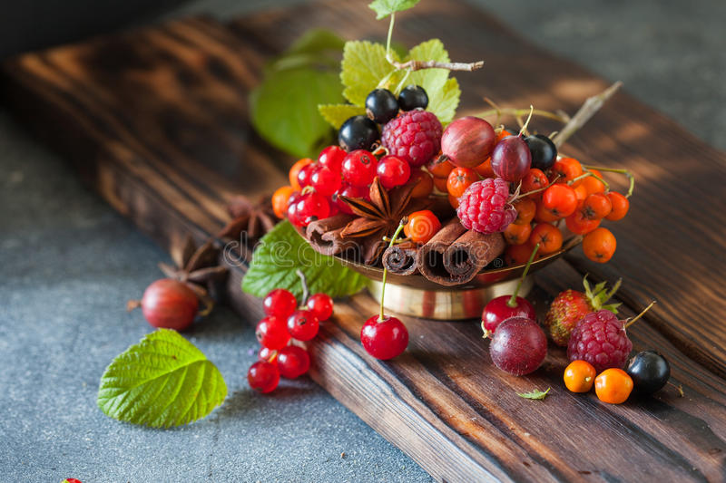 Assorted summer and autumn berries stock photography