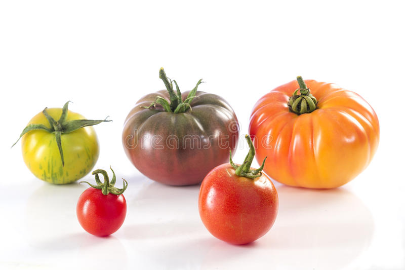Assorted tomatoes heirloom isolated on white stock image