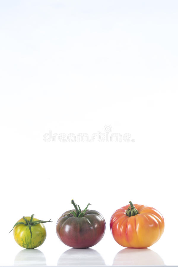 Assorted tomatoes heirloom isolated on white royalty free stock image