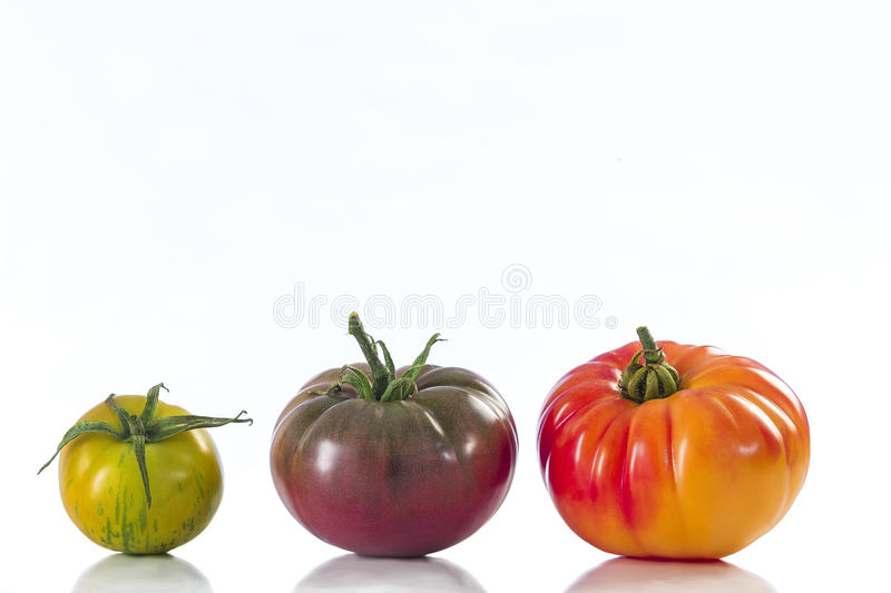 Assorted tomatoes heirloom isolated on white royalty free stock photo