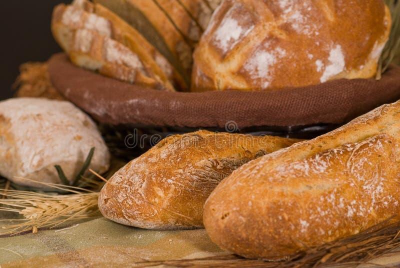 Assortiment de pain cuit au four images libres de droits