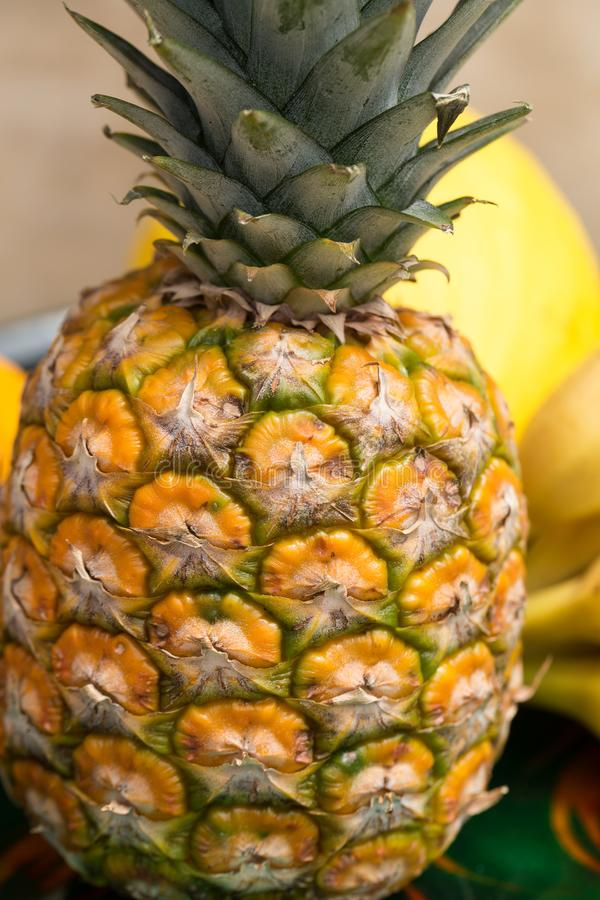 Assortiment des fruits exotiques frais images libres de droits