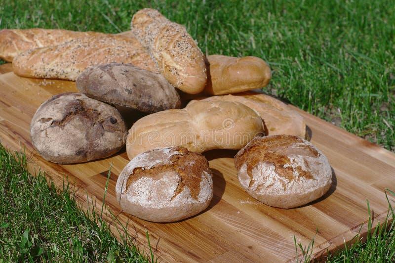 Assortiment nytt bröd, bagett, bullar på en träställning på en bakgrund av grönt gräs arkivfoto