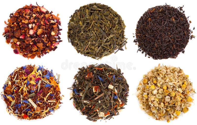 Assortiment van droge thee stock afbeelding