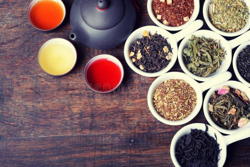 Assortiment van droge thee stock afbeeldingen