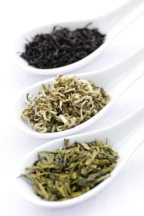 Assortiment van droge theeblaadjes in lepels stock afbeeldingen