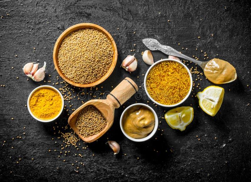 Assortiment van verschillende types van mosterd met citroenstukken en knoflook royalty-vrije stock fotografie